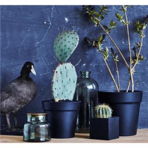 multi rund_multi kvadrat_sej design_indretning_nordisk design_dansk design_kaktus