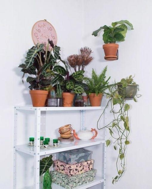 Planteholder - PlantWire Sort