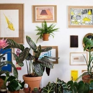 planteholder - planteophaeng - leerbaek - planteholder i guld