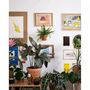 stue_indretning_leerbaek_plantwire guld_planteholder_dansk design