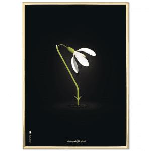 Brainchild - Vintergaek sort baggrund - danske klassiskere - dansk design - plakater - plakat - gaveide til hende - gaveide til ham - stue - indretning stue