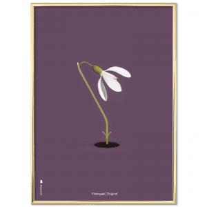 Brainchild - vintergaek - danske klassiskere - plakat - plakater - dansk design - lilla baggrund