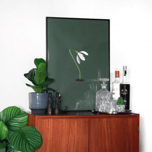 Brainchild - vintergaek - groen baggrund - plakat - plakater - hjemmebar - 50 x 70 cm